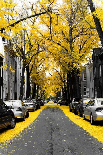 katu syksyllä