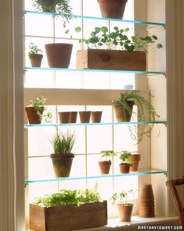 Lasihyllyt ikkunassa