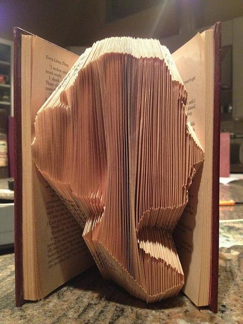 Pää kirjan sisällä